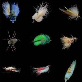 Headed to the Salt<span><br><span>The best $24 you will ever spend.<br><a href='http://www.flyfishbonehead.com/saltwater-fly-tying-videos-flyfishbonehead-fly-tying-library/' target='blank' style='text-decoration:underline;color:#ddd'><b>Read More</b></a></span></span>